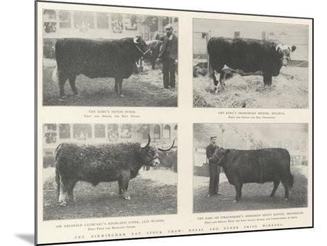 The Birmingham Fat Stock Show, Royal and Other Prize Winners--Mounted Giclee Print