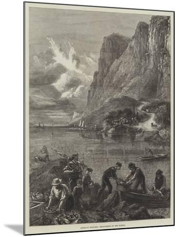 American Sketches, Shad-Fishing on the Hudson--Mounted Giclee Print