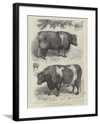 Prize Cattle at the Smithfield Club Show, Agricultural Hall, Islington--Framed Art Print