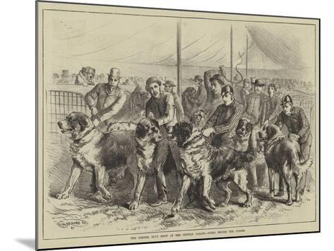 The Kennel Club Show at the Crystal Palace, Going before the Judges--Mounted Giclee Print