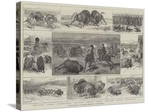 Buffalo-Hunting in the Western Territories of North America--Stretched Canvas Print