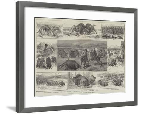 Buffalo-Hunting in the Western Territories of North America--Framed Art Print