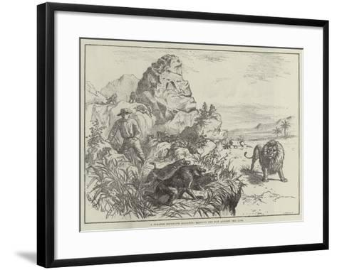 A Strange Defensive Alliance, Baboons and Man Against the Lion--Framed Art Print