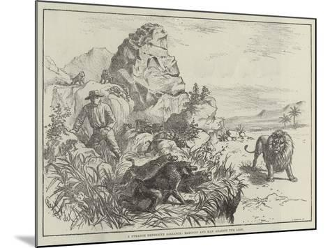 A Strange Defensive Alliance, Baboons and Man Against the Lion--Mounted Giclee Print