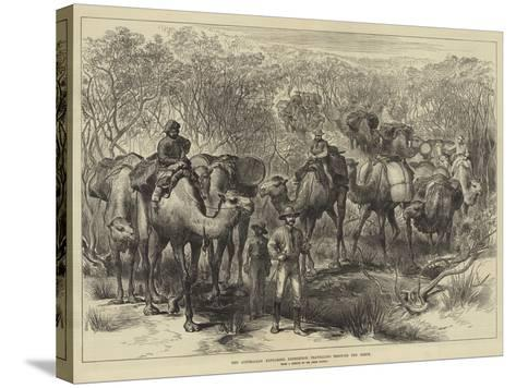 The Australian Exploring Expedition Travelling Through the Scrub--Stretched Canvas Print
