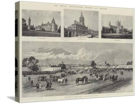 The Royal Agricultural Society at Chester--Stretched Canvas Print
