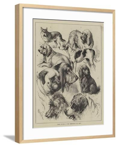 Prize Winners at the Birmingham Dog Show--Framed Art Print