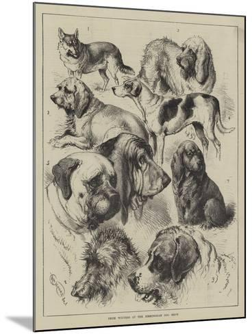 Prize Winners at the Birmingham Dog Show--Mounted Giclee Print