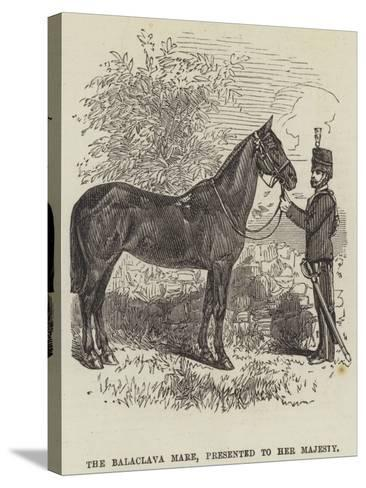 The Balaclava Mare, Presented to Her Majesty--Stretched Canvas Print