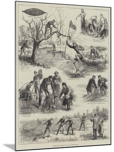 Collecting Salmon Ova on an Irish River--Mounted Giclee Print