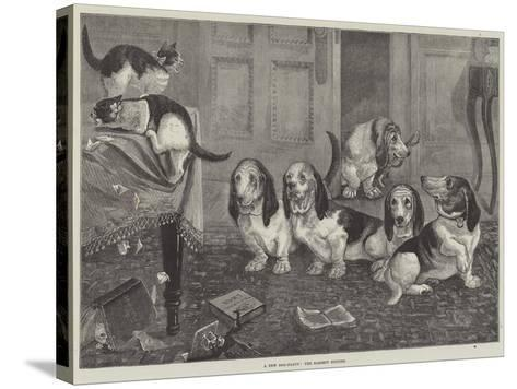 A New Dog-Fancy, the Bassett Hounds--Stretched Canvas Print