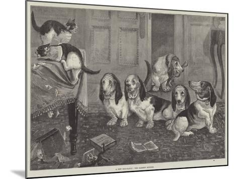A New Dog-Fancy, the Bassett Hounds--Mounted Giclee Print