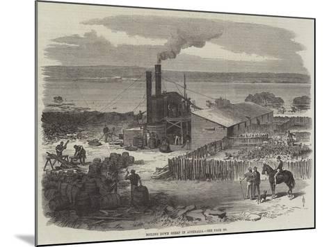 Boiling Down Sheep in Australia--Mounted Giclee Print