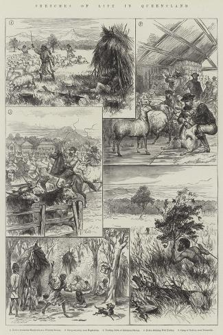 Sketches of Life in Queensland--Stretched Canvas Print