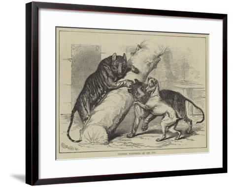 Unusual Playmates at the Zoo--Framed Art Print