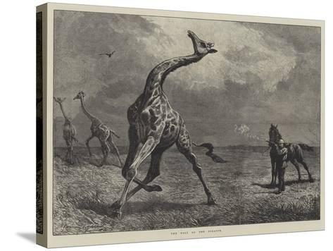 The Fall of the Giraffe--Stretched Canvas Print