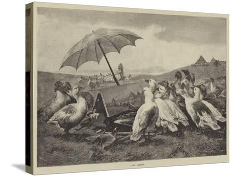 Art Critics--Stretched Canvas Print