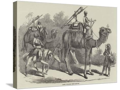 Camel Jingalls--Stretched Canvas Print