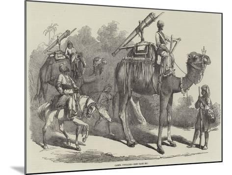 Camel Jingalls--Mounted Giclee Print