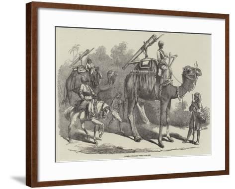 Camel Jingalls--Framed Art Print