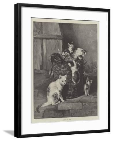Kittens at Play--Framed Art Print