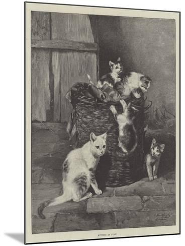 Kittens at Play--Mounted Giclee Print