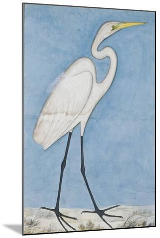 A Great Egret, Lucknow, C.1790--Mounted Giclee Print