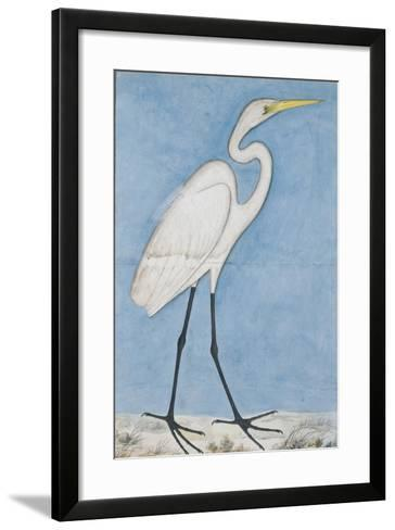 A Great Egret, Lucknow, C.1790--Framed Art Print