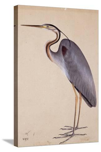A Heron, C. 1820--Stretched Canvas Print