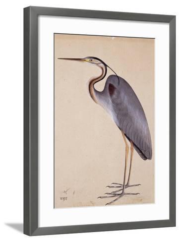 A Heron, C. 1820--Framed Art Print