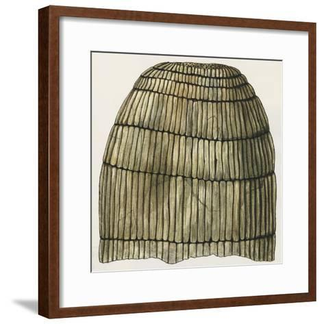 Stem of Horsetail or Equisetites Arenaceus--Framed Art Print