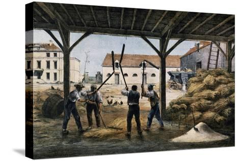 Threshing Wheat, France, 19th Century--Stretched Canvas Print