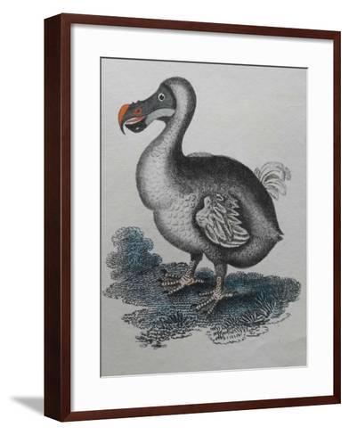 Dodo--Framed Art Print