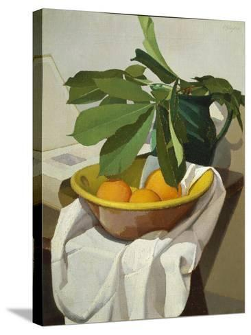 Italy, Florence, Still Life, 1925--Stretched Canvas Print