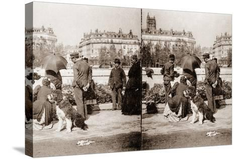 Stereoscopic View of a Flower Market, Paris, 1890--Stretched Canvas Print