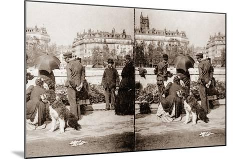 Stereoscopic View of a Flower Market, Paris, 1890--Mounted Photographic Print
