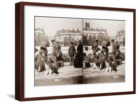 Stereoscopic View of a Flower Market, Paris, 1890--Framed Art Print