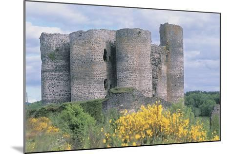 Old Ruins of a Castle, Chateau De Domeyrat, Auvergne, France--Mounted Photographic Print