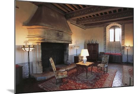 Room with Fireplace, Chateau of Septeme, Rhone-Alpes, France--Mounted Photographic Print