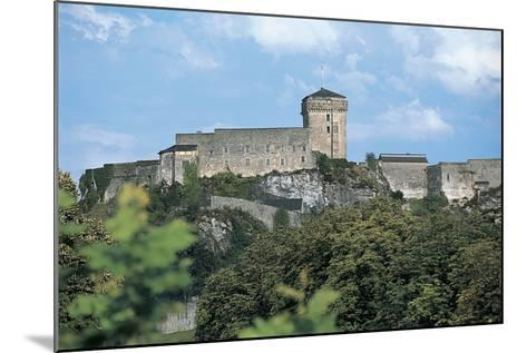 Low Angle View of a Castle, Lourdes, Midi-Pyrenees, France--Mounted Photographic Print