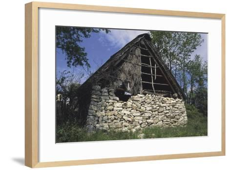 Trees Along a Barn, Colli a Volturno, Molise, Italy--Framed Art Print