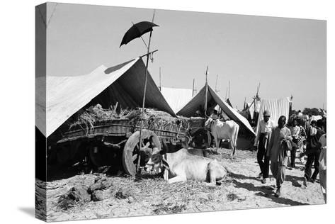 Tent Identifier Umbrella, Voutha Fair, Gujarat, India, 1983--Stretched Canvas Print