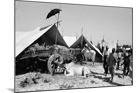 Tent Identifier Umbrella, Voutha Fair, Gujarat, India, 1983--Mounted Photographic Print
