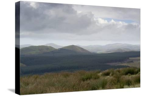 The Cheviot Hills, Seen from Carter Bar, Scottish/English Border, UK--Stretched Canvas Print