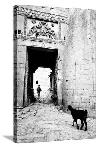 Goat and Man, Fort Entrance Gate, Jaisalmer, Rajasthan, India, 1984--Stretched Canvas Print
