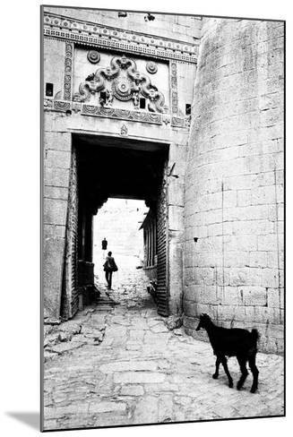 Goat and Man, Fort Entrance Gate, Jaisalmer, Rajasthan, India, 1984--Mounted Photographic Print