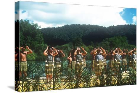 Ngaruawahia River Regatta, Maori Festival, Ngaruawahia, New Zealand--Stretched Canvas Print