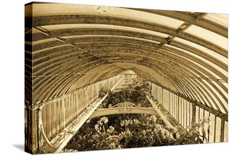 Inside the Palm House, Kew Gardens, London--Stretched Canvas Print