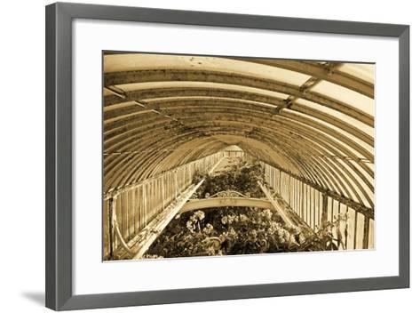 Inside the Palm House, Kew Gardens, London--Framed Art Print