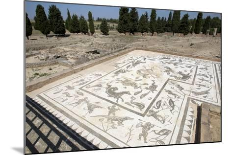 Roman City of Italica, House of Neptune, Spain--Mounted Photographic Print